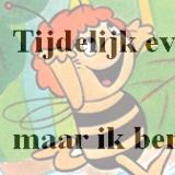 GoTo www.MajadeBij.nl