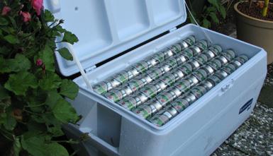 bier genoeg?