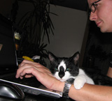 Pinkeltje is een snoessie en hij is er altijd graag 'bij' als wij zitten te computeren!